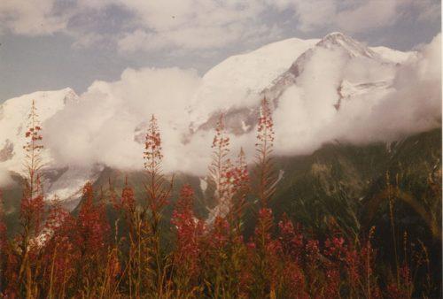 Le Massif du Mont Blanc vu de Coupeau, commune des Houches, photographie de Claude Kastler (1988)