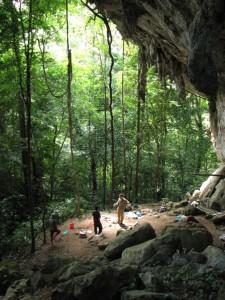 L'abri sous roche de Liang Pemalawan / Liang Pemalawan rock shelter