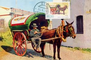 Figura 2 – Postal Máximo. Coleção Biblioteca Celestino Domingues