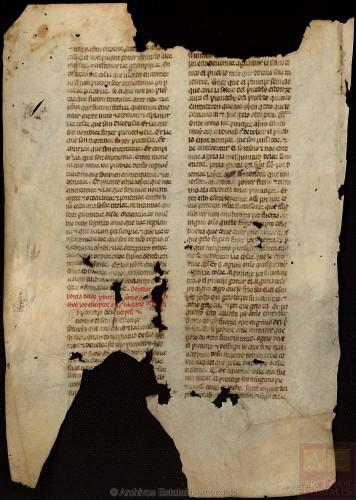 ARCHV, Pergaminos, carpeta 116, 8, (vuelto) © Ministerio de Cultura. Gobierno de España.