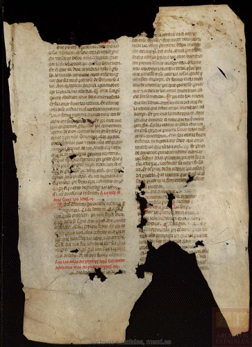 ARCHV, Pergaminos, carpeta 116, 8, (recto) © Ministerio de Cultura. Gobierno de España.