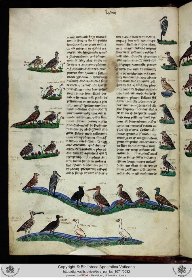 Biblioteca Apostolica Vaticana, reproducción digital del ms. Pal. Lat. 1071, fol. 39v