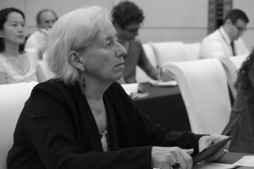 DSC07337-1-Chantal-Kesteloot-Jinan-August-2015-Why-PH-IFPH-session