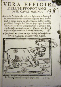 Hippo.ippopotamo.figura.zerenghi
