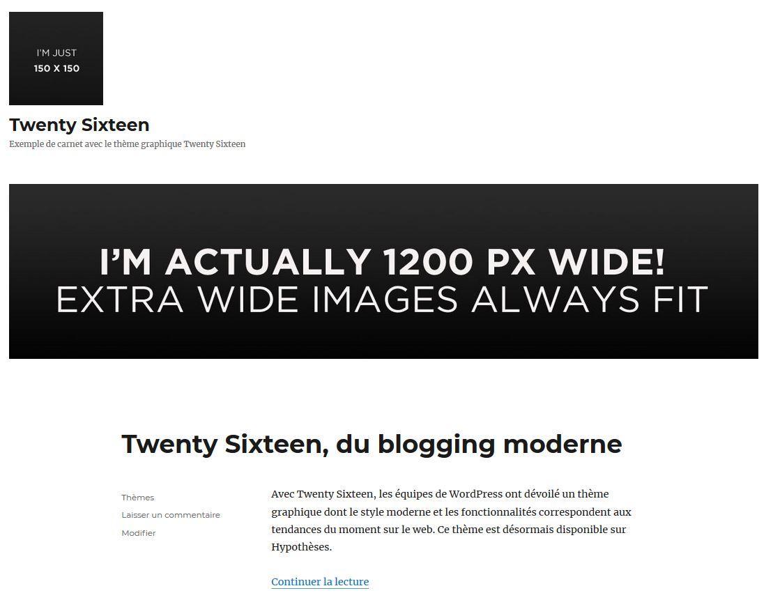 Emplacements du logo et de l'image d'en-tête du carnet sous Twenty Sixteen