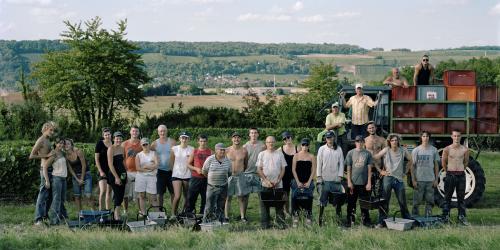 Famille Bompart, viticulteurs. Saisonniers et viticulteurs propriétaires exploitants. Dernier jour de la vendange. Vendanges 2011. Saâcy-sur-Marne. (Photo : Guy Hersant)