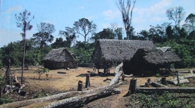 Las tierras bajas de Bolivia: miradas históricas y antropológicas