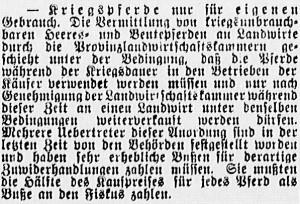 19150611_Kriegspferde_564