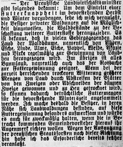 19150618_Futterknappheit_570