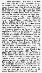 19151031_November_125