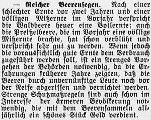 19160616_Beeren_341