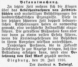 19160728_Felddiebstähle_375