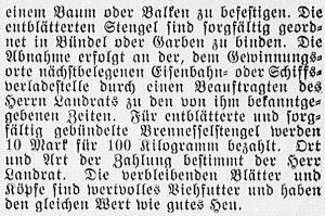 19160709_Brennesseln_2_359