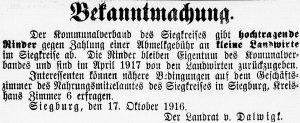 19161029_bekanntmachung_465