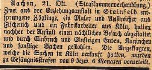25101916steinfeld