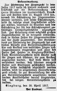 19170509_ziegenzucht_22