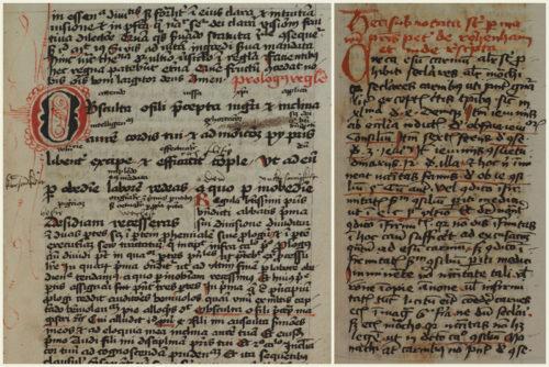 Cod. 297 (Hübl 237), fol. 3r: Johannes Schlitpacher: Memoriale viaticum Regulae S. Benedicti. Cod. 392 (Hübl 391), fol. 212r: Petrus von Rosenheim: De esu carnium.