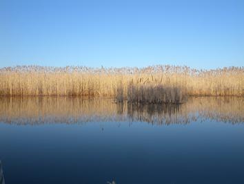 jeux de lumière et de reflets dans les eaux du Danube