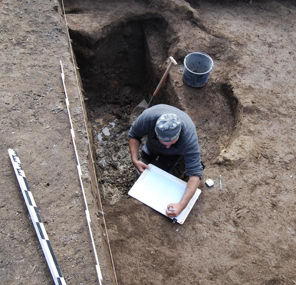Relevé de la coupe de la fosse 2015. Le niveau de la nappe phréatique est visible au fond de la fosse.