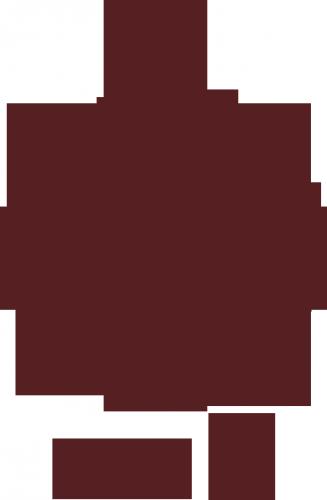 LeTamis-OTO-marron