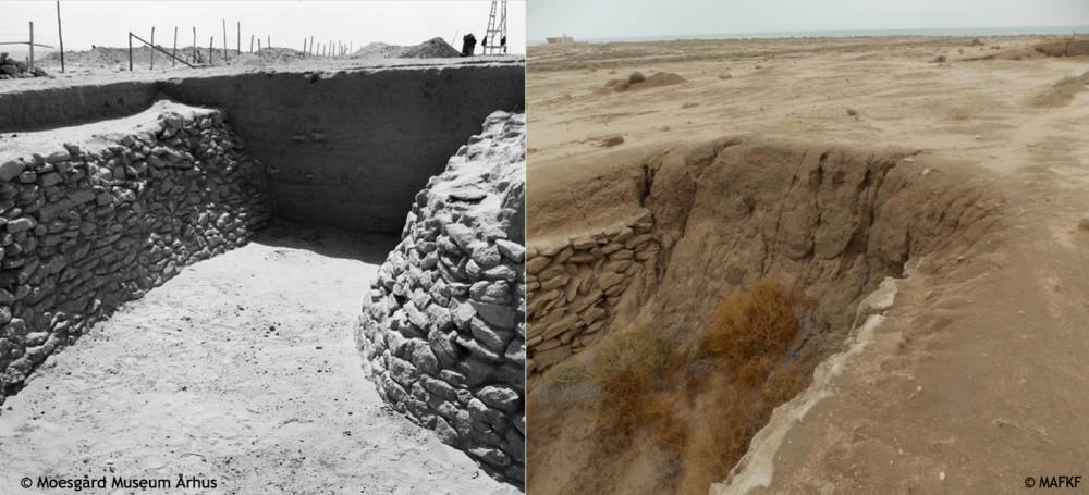 Fig. 2 : état du fossé est lors de sa mise au jour dans les années 1950 (Moesgaard Museum 1960) et en 2013 (MAFKF 2013)