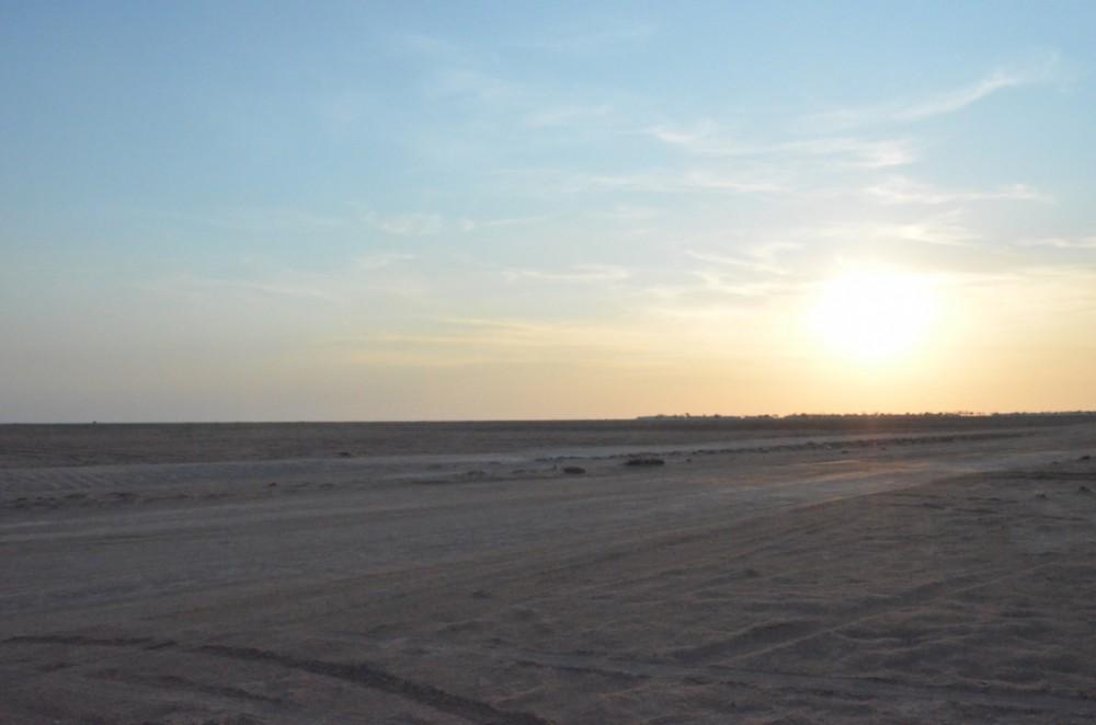 Fig. 3 : vue du désert en bordure du site d'al-Quṣūr (photo B. Couturaud 2012)