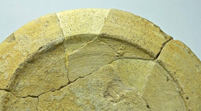 Comblement et mise en teinte en conservation-restauration appliqués aux objets issus des fouilles archéologiques de la MAFKF : réflexion et application