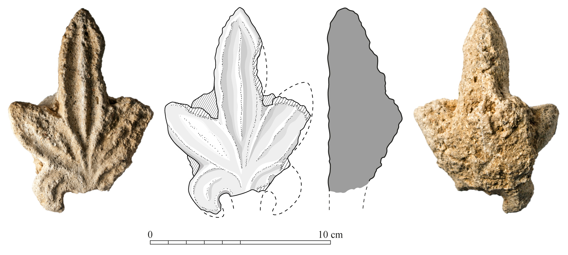 Fig. 1 : photographie et dessin vectoriel d'un fragment de stuc (H. David-Cuny, MAFKF 2014).