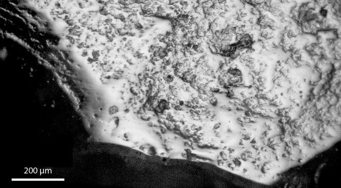 Analyse fonctionnelle des lames-faucilles de Dja'de-el-Mughara