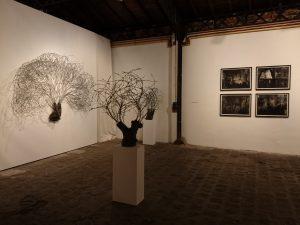 """Vue de l'exposition """"Dendromorphies, L'Arbre et ses créations"""", 2016."""