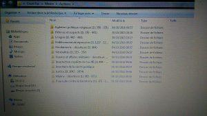 Illustration des différentes catégories des archives organisées sur mon ordinateur personnel