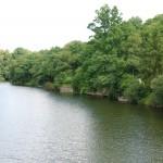 1.Pont des Biards Yvrande amont (Isigny-le-Buat, 50). Août 2013. Cliché 101D