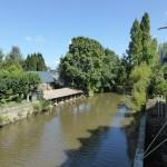 la Sélune au Pont de Mortain amont 3 (Saint-Hilaire-du-Harcouet, 50), Août 2014