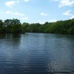 Site de pêche de la Chandelle (Virey, 50), Cliché 189