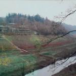 La Mazure (Saint-Martin-de-Landelles, 50), 1993