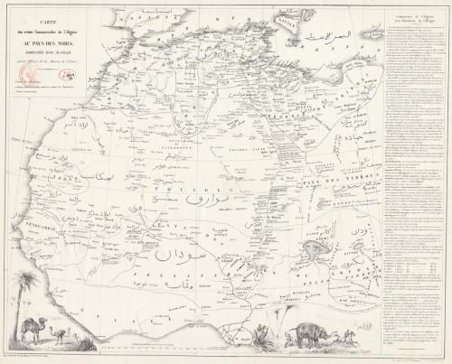 Algérie au pays des noirs