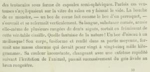 Verne-Calmar-extrait-3