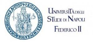 Logo Napoli University