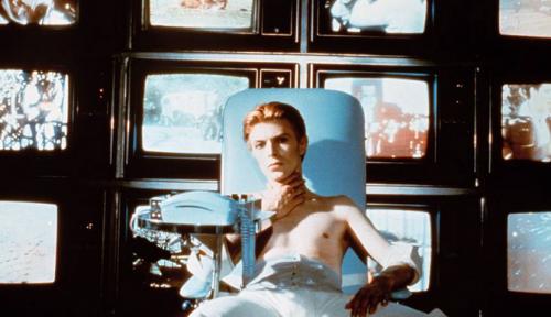 Bowie 5 actes
