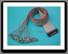 electrode eeg