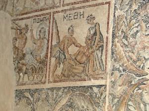Detail aus dem Mosaik in der Dionysosvilla in Sepphoris (Foto: Thomas Hieke)