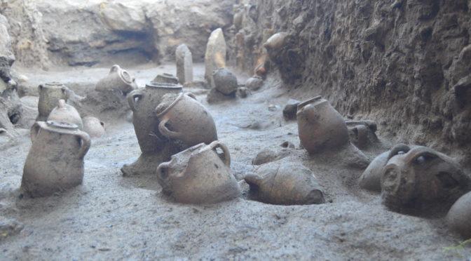 Formation à l'étude archéothanatologique de dépôts secondaires à crémation concernant des enfants morts en bas âge