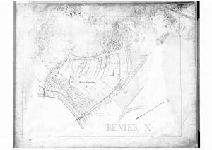 Merkelsche Karte Revier X (StaL A 347, Reproduktion)