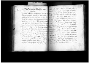 Lemgoer Stadtbuch, 1586, Kapitel 20 (StaL A 450)