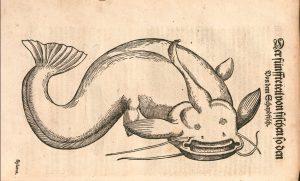 gessner-zurich-1575