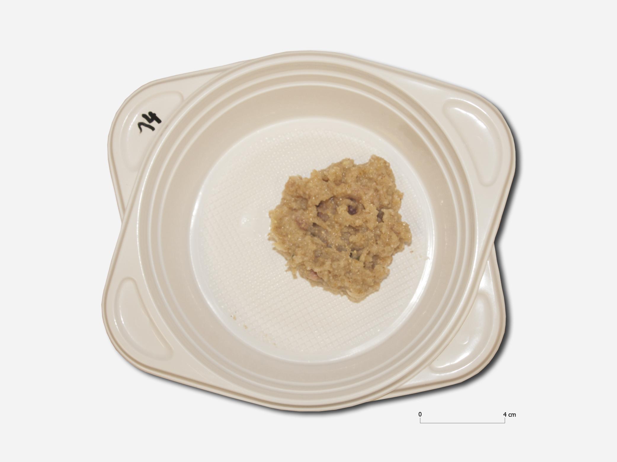 Abb. 1 Fertiggestellte puls (Probe VR2/LNF2012/14, 133 g; D. Hagmann 2014)