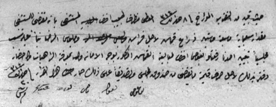 Fig. 3. Ottoman document reporting a city council decision related to municipal hospital, 1314/1898. Historical Archives of Jerusalem Municipality, Vol6-p8b-items50-53.