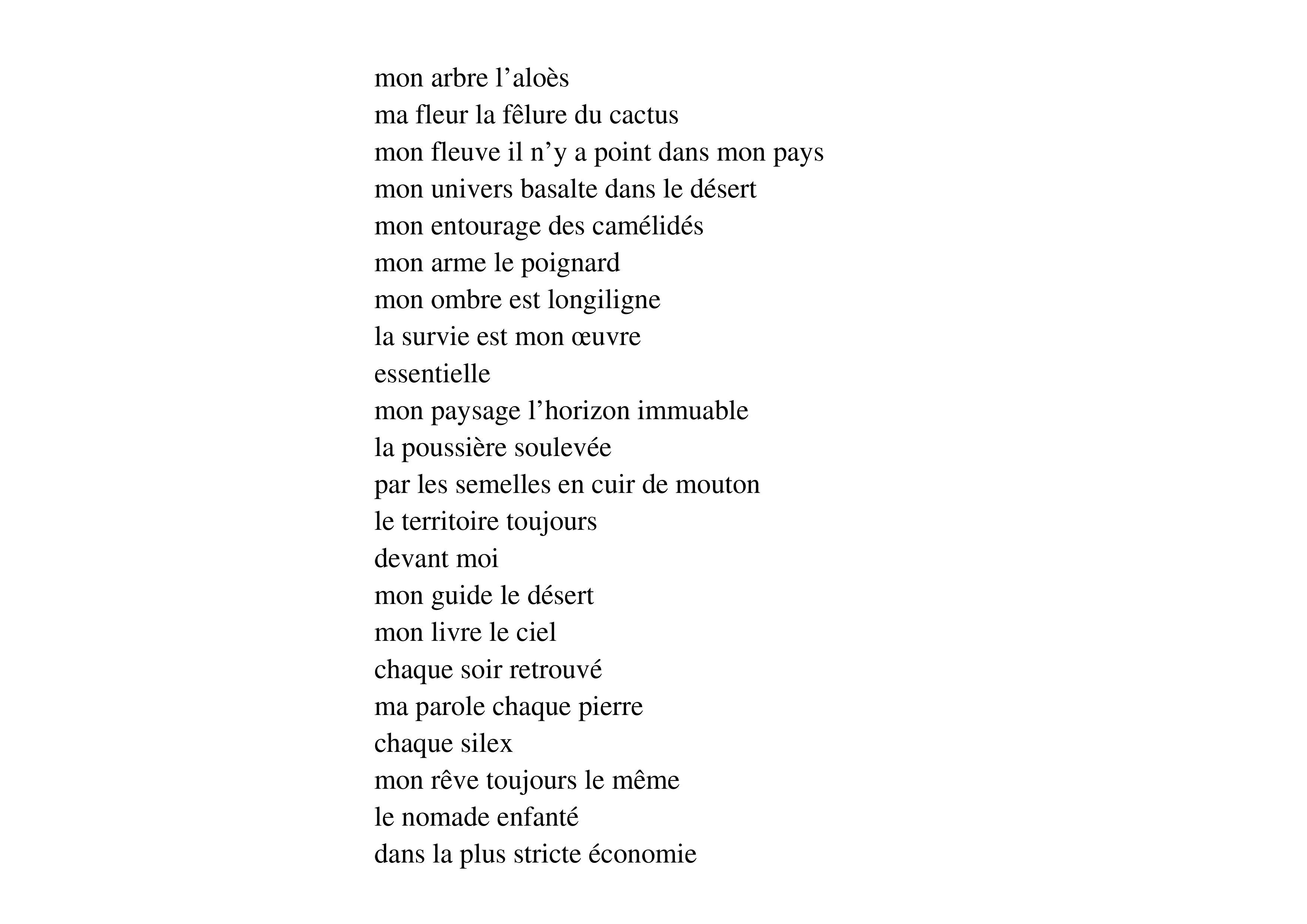 poème waberi