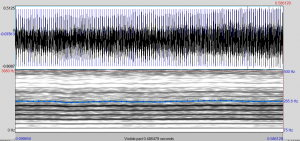 Espectrograma SSM