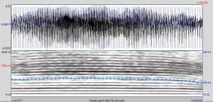Espectrograma SD